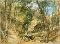 Joseph Mallord William Turner - PD.50-1958 The Woodwalk, Farnley Hall, c.1818