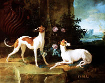 Jean-Baptiste Oudry - Misse and Turlu, two greyhounds of Louis XV