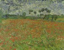 Vincent van Gogh - Field of Poppies, Auvers-sur-Oise, 1890