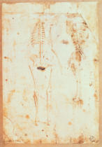 Leonardo da Vinci - Two studies of a hanging skeleton