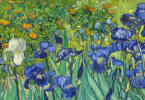 Vincent van Gogh - Detail of Irises, 1889