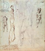 Michelangelo Buonarroti - Anatomical drawings with accompanying notes