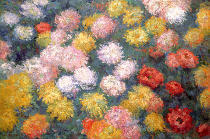 Claude Monet - Chrysanthemums, 1897
