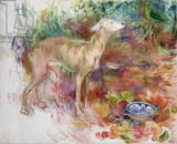 Berthe Morisot - Laerte the Greyhound, 1894