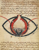Al-Mutadibi - Anatomy of the Eye, from a book on eye diseases