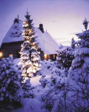 waldkirch f1 online weihnachtsbaum im schnee vor einfamilienhaus abendstimmung. Black Bedroom Furniture Sets. Home Design Ideas