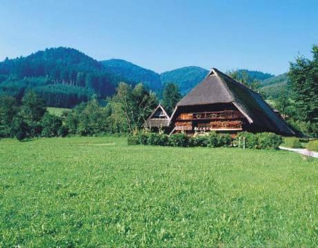 waldkirch f1 online baden w rttemberg schwarzwald. Black Bedroom Furniture Sets. Home Design Ideas