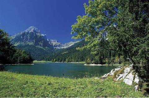 eiben f1 online gebirge glarner alpen see obersee kunstdruck leinwandbild. Black Bedroom Furniture Sets. Home Design Ideas