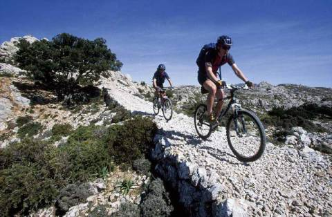 siepmann f1 online mountainbike berg training sport mountain biking urlaub radfahren fahrrad. Black Bedroom Furniture Sets. Home Design Ideas