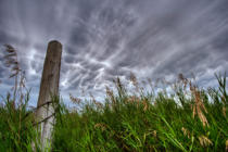 First Light (F1 Online) - Mammatus-Wolken, Zaun-Stelle, Fenceposts, Wildes Gras