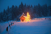 Beate M�nter (F1 Online) - Chapel and christmas tree, Wettersteingebirge, Bavaria, Germany, Europe