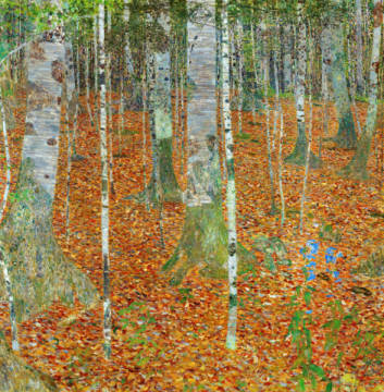The Birch Forest (wood), 1903 of artist Gustav Klimt as framed image