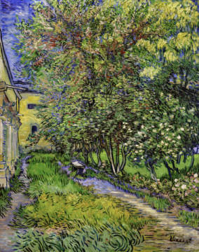 Garden of Saint-Paul Hospital of artist Vincent van Gogh as framed image