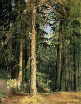 Fine Art Reproduction, individual art card: Iwan Iwanowitsch Schischkin, Forest