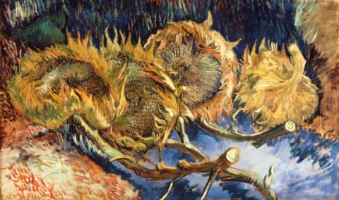 Van Gogh Vier Verblühte Sonnenblumen Kunstdruck Leinwandbild