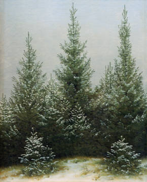 Fichtendickicht im Schnee of artist Caspar David Friedrich as framed image