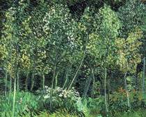 Vincent van Gogh - Small forest