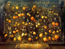 Bartolomeo Bimbi - Various citrus fruits