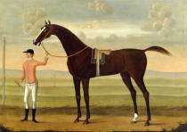 Daniel Quigley - A Bay Racehorse with his Jockey on a Racecourse