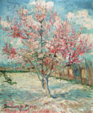 Peach Tree in Bloom (in Memory of Mauve) of Vincent van Gogh