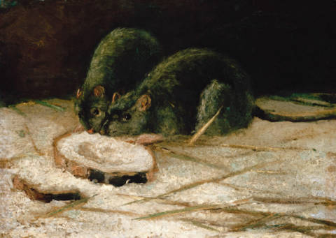 Fine Art Reproduction, individual art card: Vincent van Gogh, Zwei Ratten