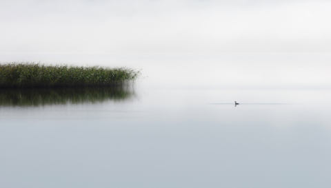 Foto-Kunstdruck: Bjorn Emanuelson, The lone fisher