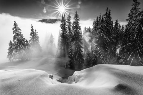 Photo Print: sorin onisor, A Winter Tale !