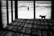 Paulo Abrantes - Left Behind