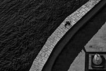 Paulo Abrantes - Down By The River