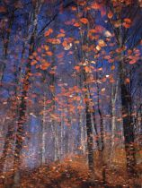 Florentin Vinogradof - Autumn Leaves