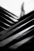 Paulo Abrantes - Going Nowhere Fast