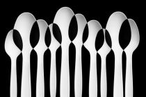 Jacqueline Hammer - Spoons Abstract: Forest