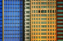 Mathilde Guillemot - Windows on the City