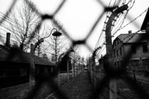 Javier Palacios Prieto - Behind the fences - Auschwitz I