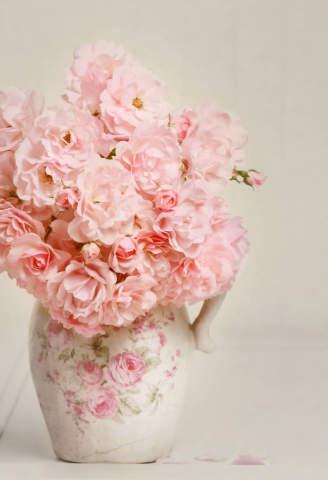 Franz Rudolf Bouquet Of Pink Roses In A Vase Kunstdruck Leinwandbild