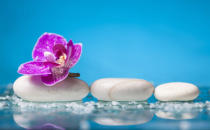 Erika Eros - Spa still life with pink orchid and white zen stone in a serenity pool