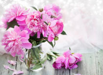 Erika Eros - Pink peonies on wooden background - vintage photo