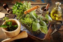 Daniel Reiter - Culinary herbs, olive oil and pestle on table