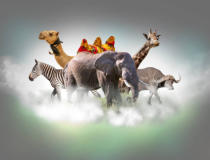 Volodymyr Melnyk - Wild animals group - giraffe, elephant, zebra above white clouds in gray sky