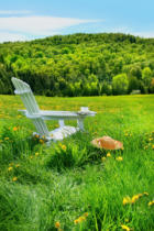 Ingram Vitantonio Cicorella - Relaxing on a summer chair in a field of tall grass